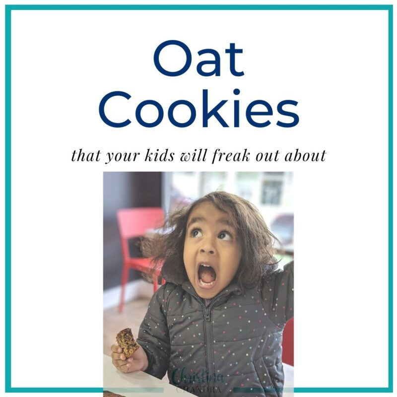 oat cookies by christina chandra